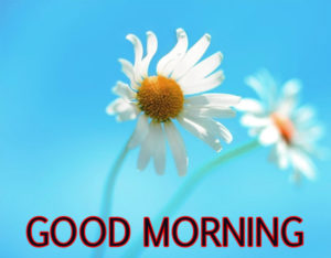 good-morning-pics-2